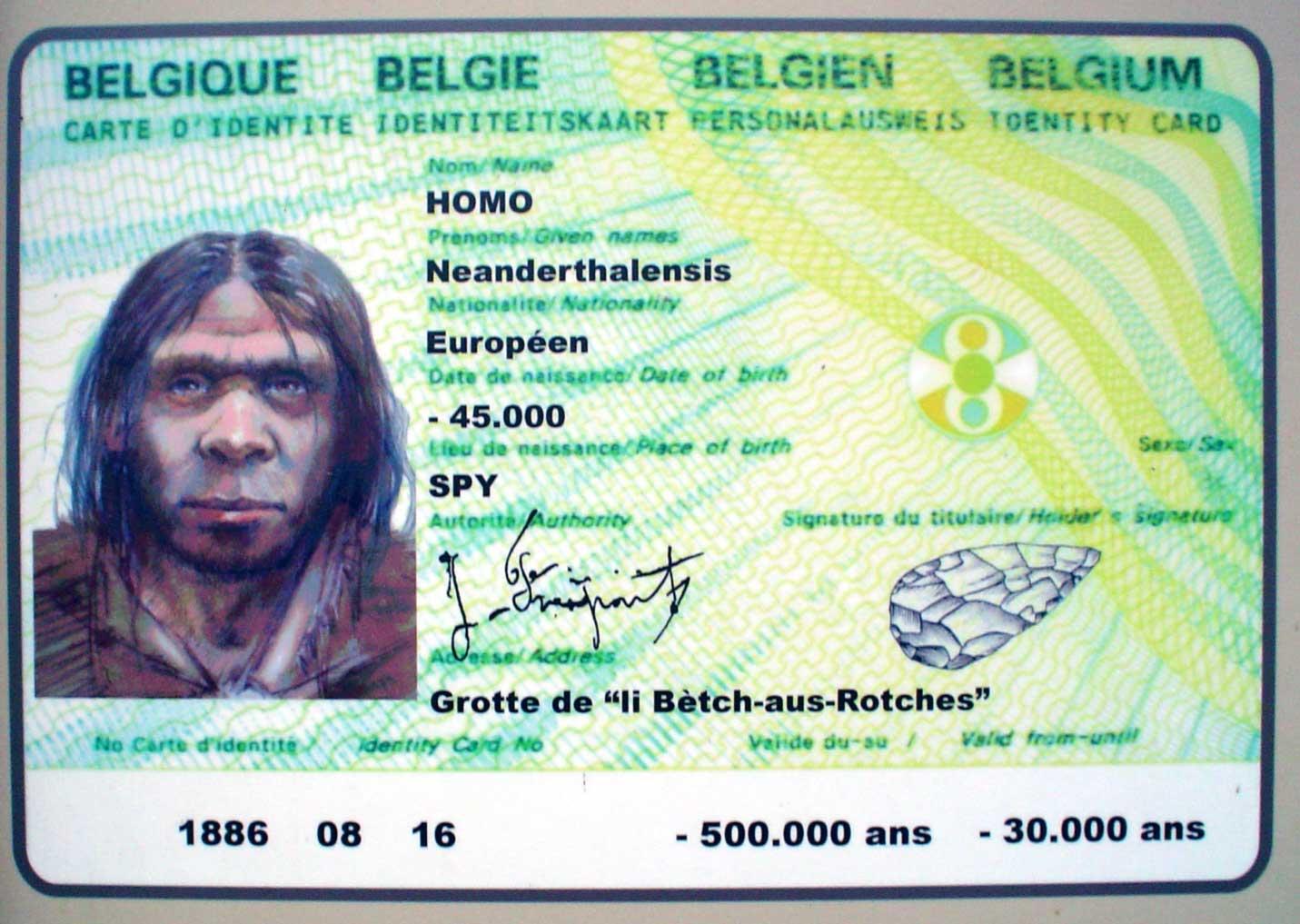 Images Comiques - Page 9 Neandertalien6